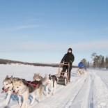 Ferienhaus Lappland - Hundeschlittenfahrt