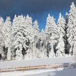 INN's Holz Chalet - Winterlandschaft Böhmerwals