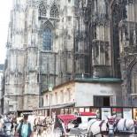 A-Rosa Flusskreuzfahrt: Wien mit Stephansdom; Bild: S.Vodicka