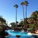 Bahia Kempinski Hotel: Palmen am Pool mit Stricküberzug; Bild: Sandra Müller-Hofner