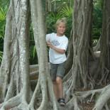Kind unter Mangrovenbaum