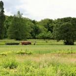 Ecomusee: Landwirtschaft wie anno dazumal ©AndreaFischer
