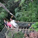 Familie in den Baumwipfeln Loro-Parque