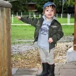 Kind beim Stall