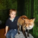 Kind mit Fuchs