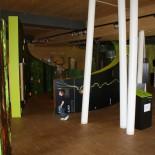 Ausstellungsfläche WunderWeltWald