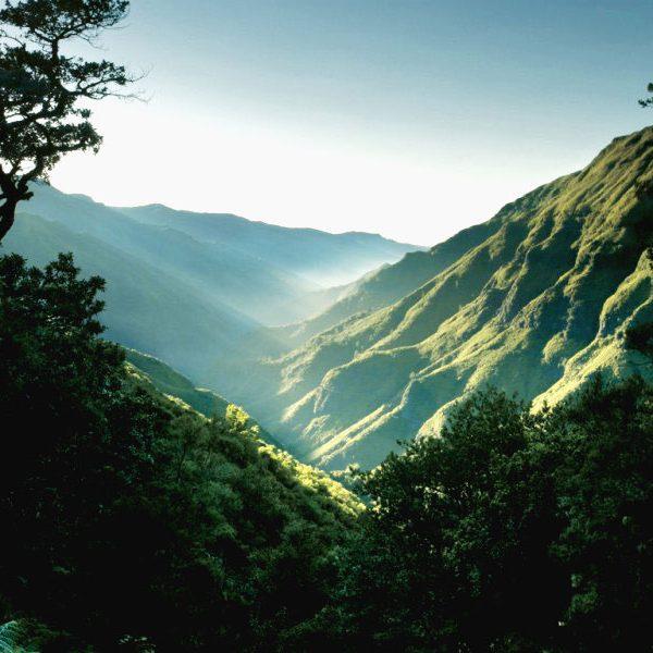 Madeira_Landschaft-800x600