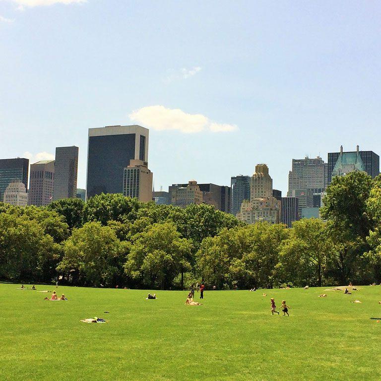 Central Park in New York im Sommer
