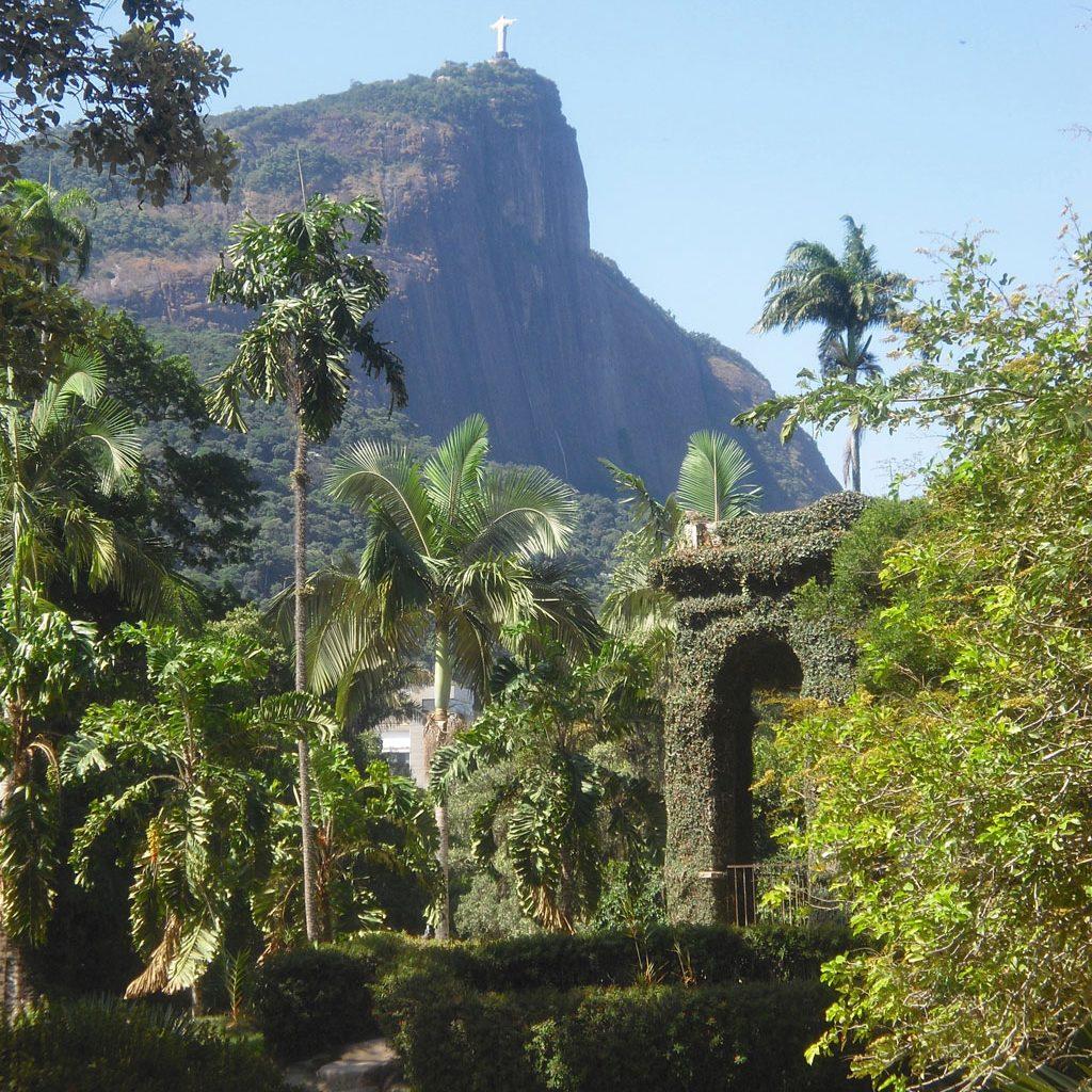 Rio de Janeiro Botanischer Garten Bild: Sandra Mueller-Hofner, Trips4kids.de