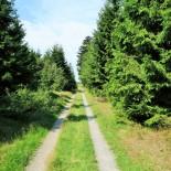 Rothaarsteig: Wander Weg; Bild: A.Schmelter