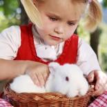 Stanglwirt Kinderbauernhof Mädchen mit Hase