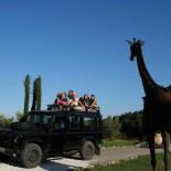 Kinder auf Safari im Chateau Villarlong