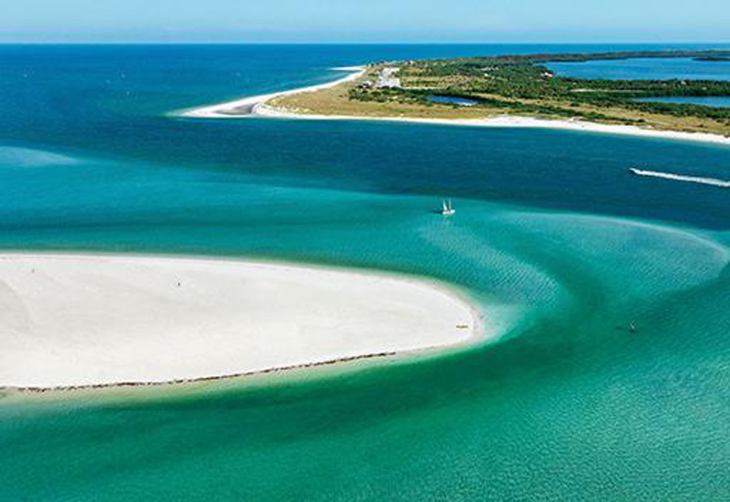 Honeymoon Island Dog Beach Fl