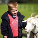 Der Unterschwarzachhof, Junge mit Ziege