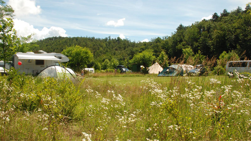 Wiese Camping-Tenuta-Squaneto Foto: © Camping-Tenuta-Squaneto