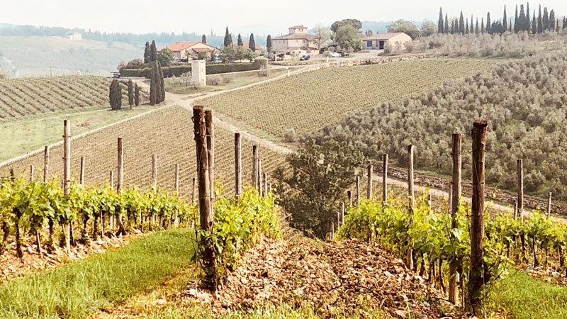 Chianti Weingebiet Casnuova di Ama