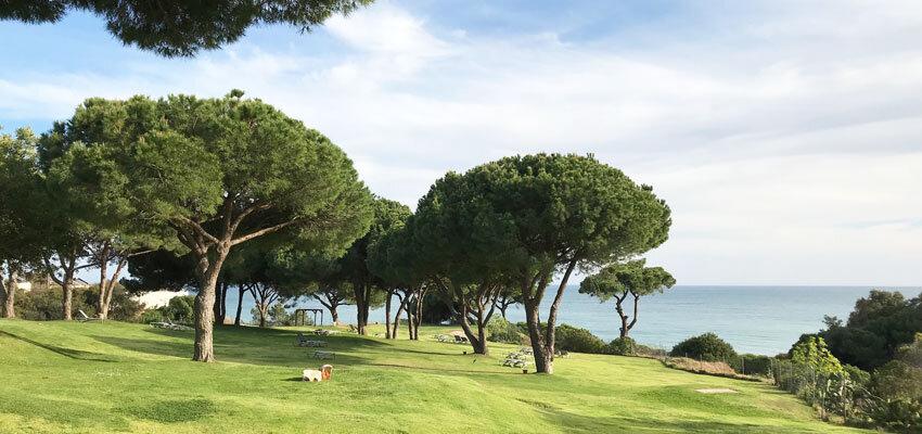 Wiese mit Meerblick im Club Med Da Balaia