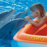 Mädchen mit Delphinen