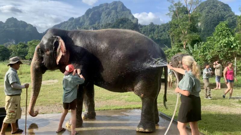 Elephant-Hills-Elefantendusche Foto: © Andrea Fischer