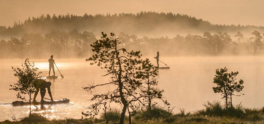 Visit Estland - Estland SUP im Moor