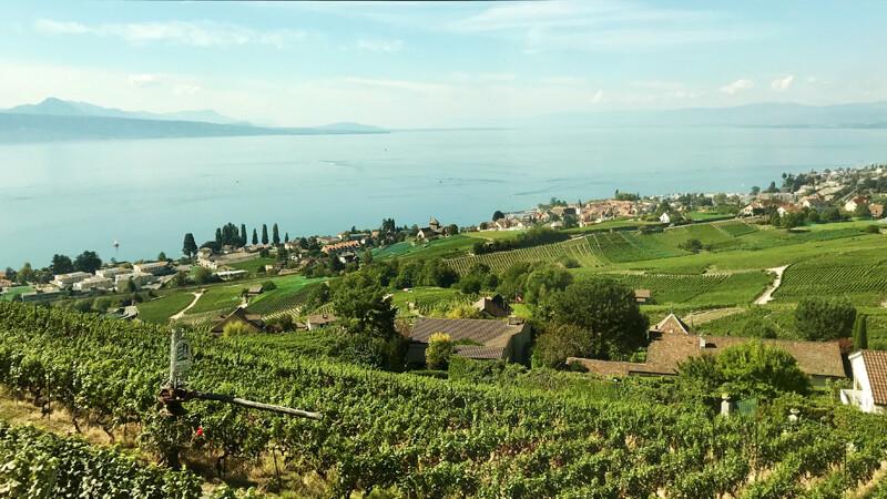 Genfer-See-Blick von der Bahn Foto: Andrea Fischer