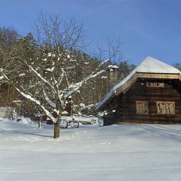 Gfaellhuette im Winter -Ferienhof Sellmayer