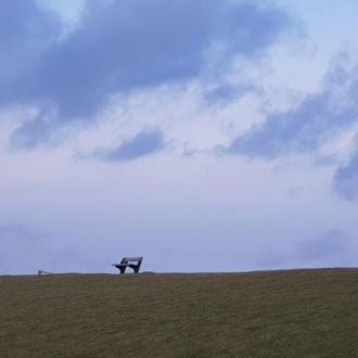 Insel-Pellworm-Landschaft- Bank auf Deich @ Foto: Nadine Sorgenfrei