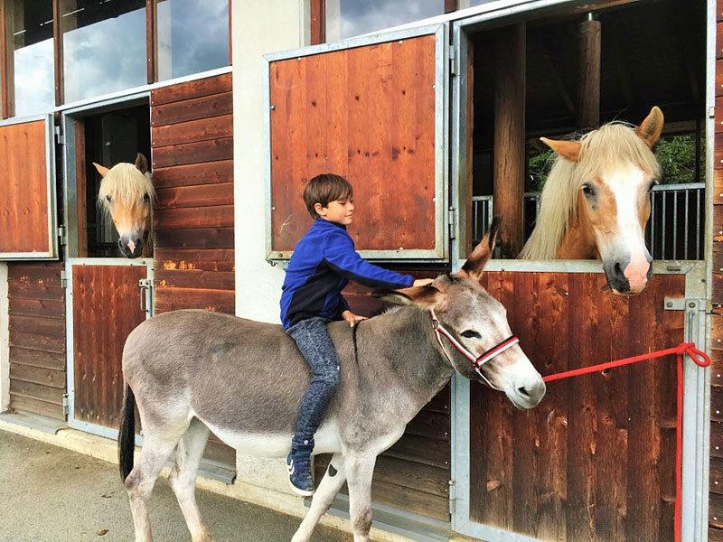 Kind beim Pferdestall- Moesslacherhof © Foto: Nussin Armbrust