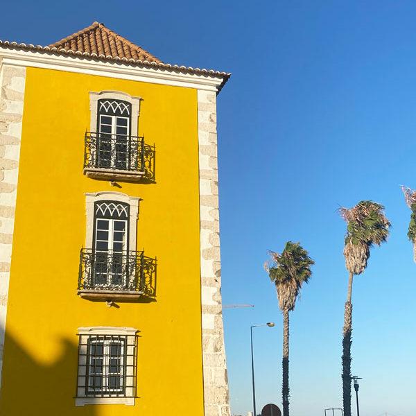 Palacio-Dos-Arcos---Palmen