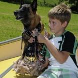 Hunderfuehrerschein: Junge mit Hund