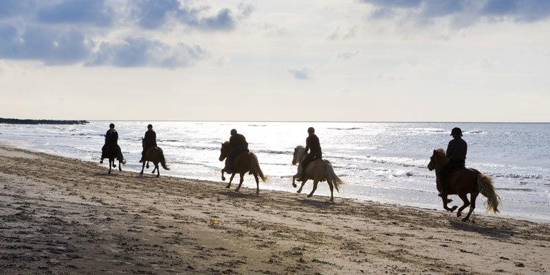 Skallerup_Seaside-Resort Ausritt am Beach. Bild    Skallerup_Seaside