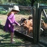 Lormanberg Bauernhof - Lilli beim füttern der Tiere