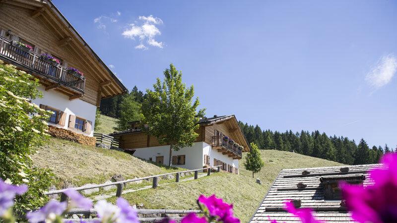 Taser Alm Aussenansicht - Familenhotels Südtirol